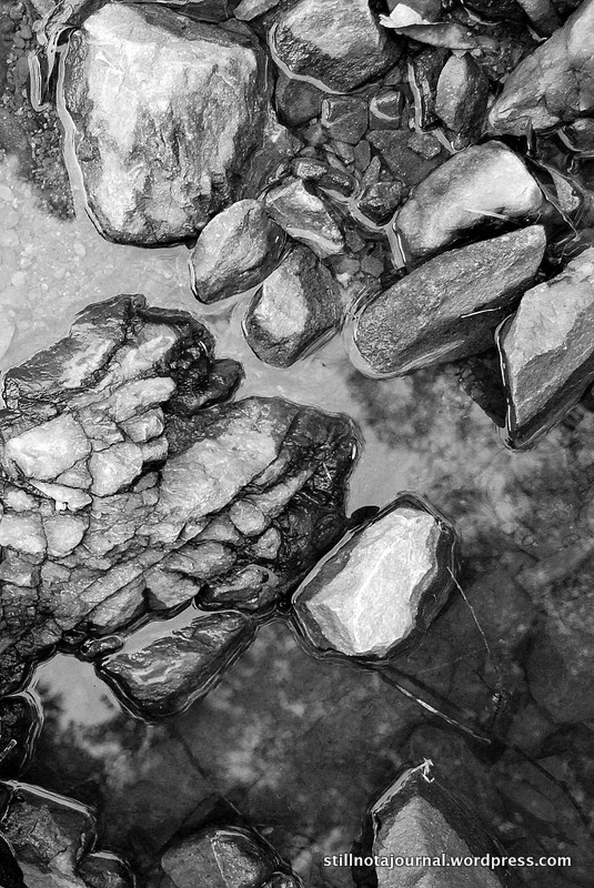 creek black and white rocks