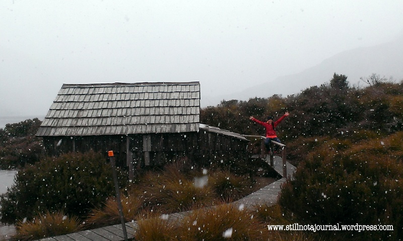 Our first ever bushwalk in snow. Magical! With bonus lack of hypothermia.