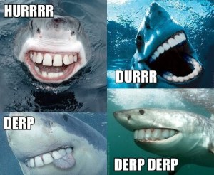 hurrrr-durrr-derp-derp-derp-shark