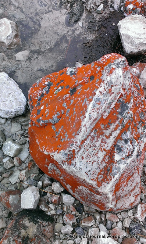 Justine thought these rocks had been painted to mark the track so we didn't get lost. In her defence, fluoro orange isn't a colour you'd normally expect to find in nature.