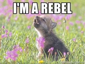 I'm a rebel