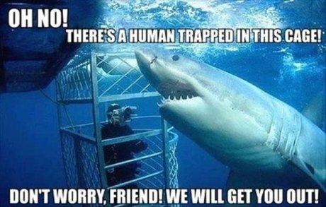 SAVE THE HUMAN