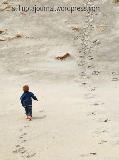 sand dune Smaills Beach