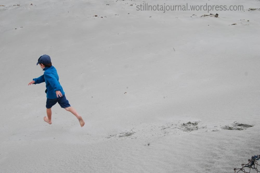 sand dune Smaills Beach Dunedin