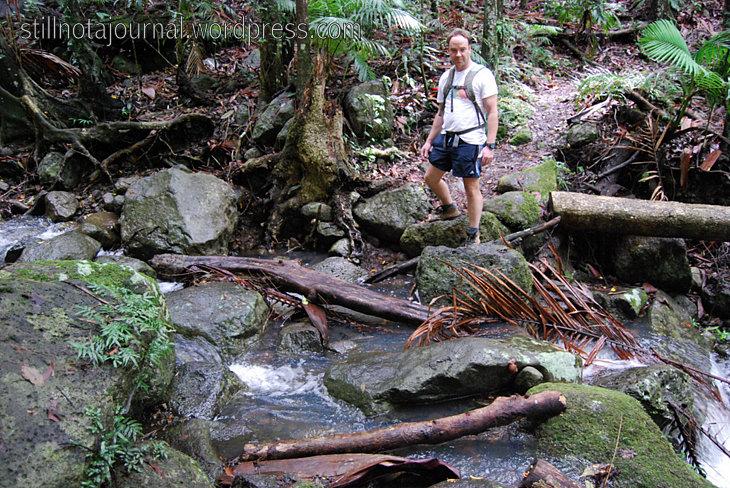 10 Creek crossing, Ballanjui Circuit Binna Burra Lamington National Park