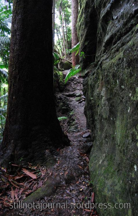 Between a rock and a big drop.