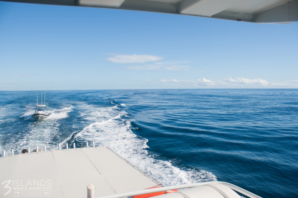 Ningaloo Reef Marine Park in winter. OMG