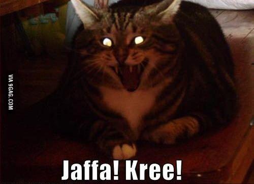 Jaffa! Kree!