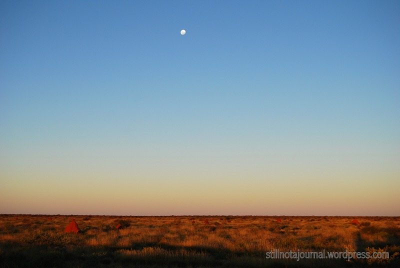 There's two things I love in this photo - endless sky and vivid red dirt.