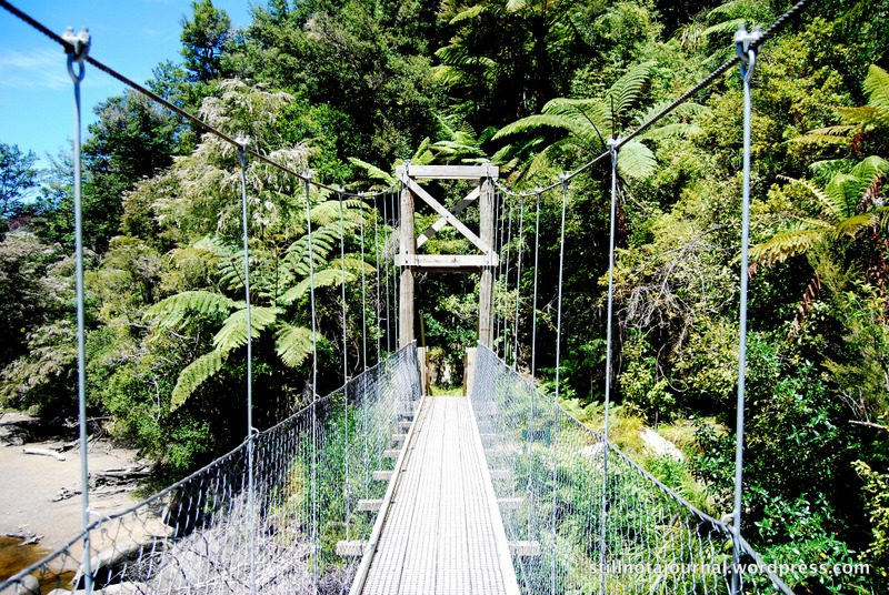 Waterfall Creek Swingbridge, Abel Tasman National Park