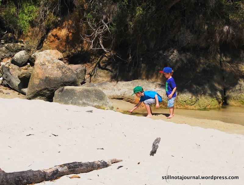 Abel Tasman NP Medlands Beach