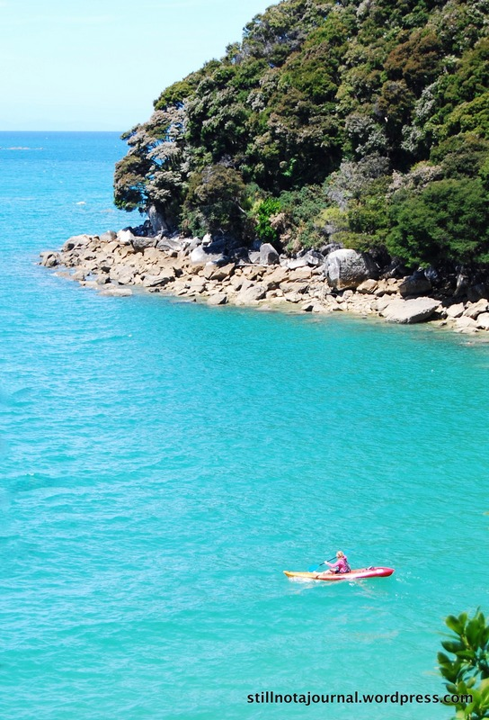 sea kayaking Medlands Beach, Abel Tasman