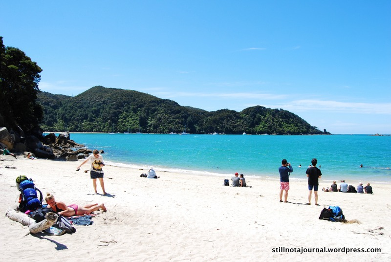 Medland's Beach, Abel Tasman National Park NZ