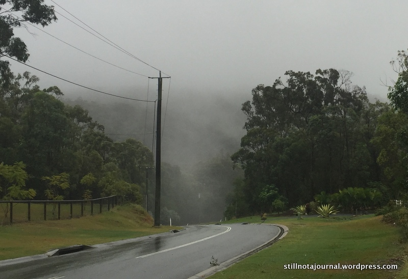 Towards the misty rain-cloaked hills of the Hinterland. Visibility was less than 200m all day.