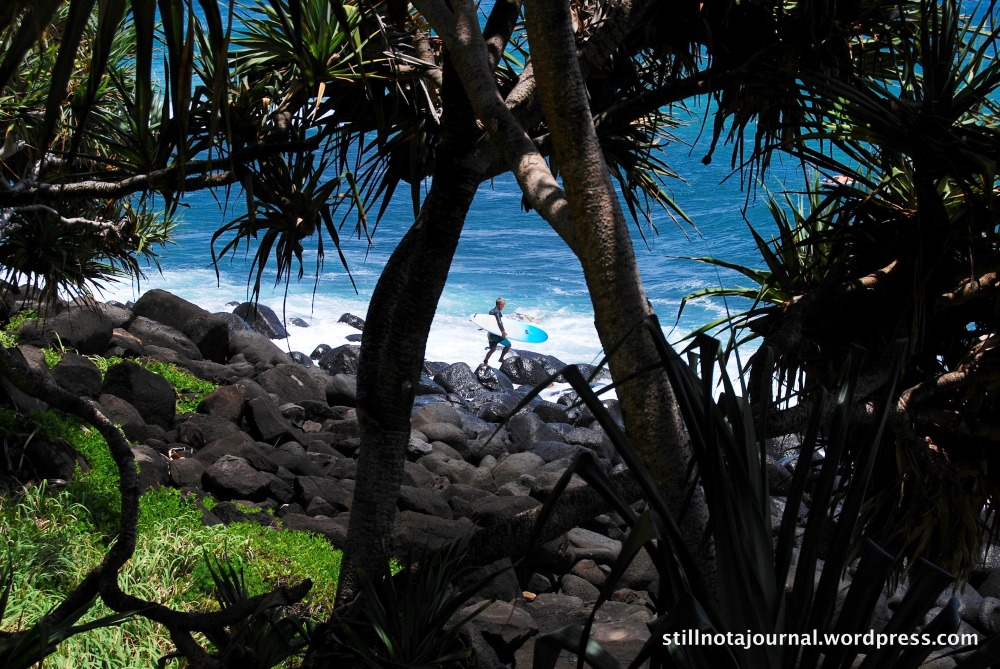 feat. surfer from Burleigh Headland Walk