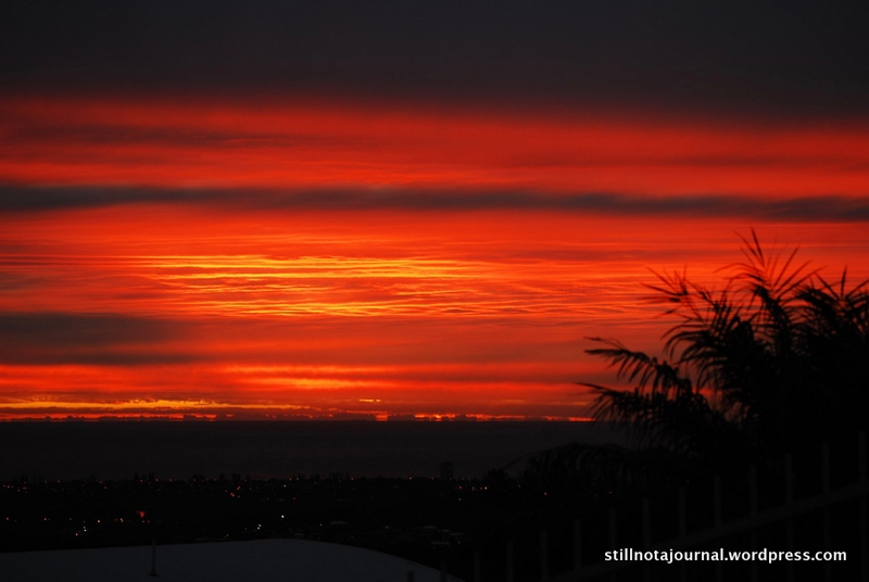 brilliant red sunrise over Pacific Ocean, Gold Coast