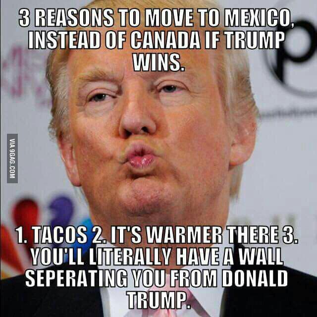 trump-wall-meme