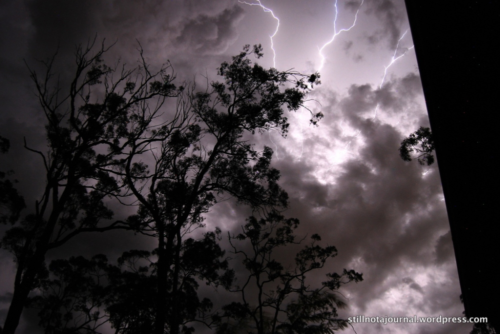 gold coast storm lightning sky tree clouds